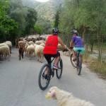 biking lefkas