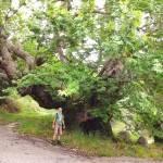 Hiking Lefkada